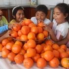 samstagstreffen-orangen